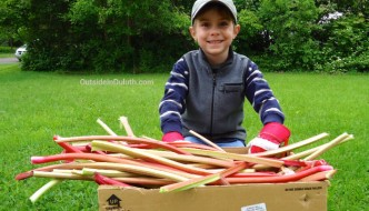 United Way's Day of Caring: Rhubarb and Compassion