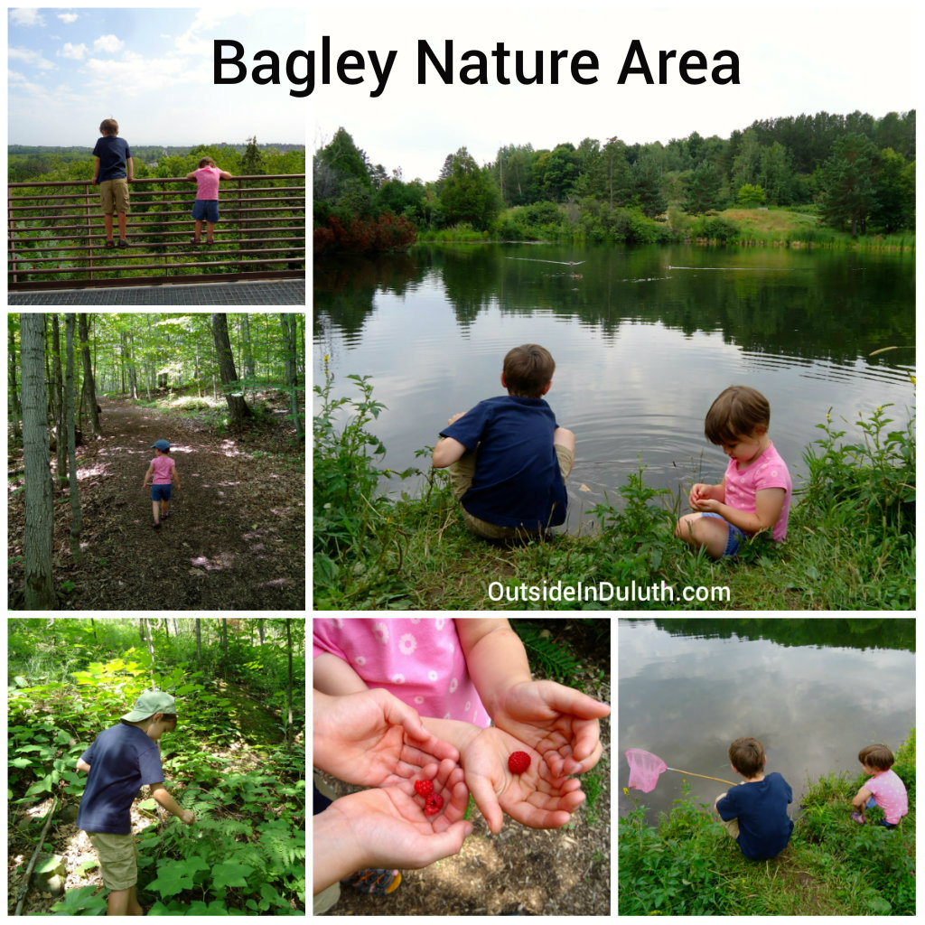 Hiking With Kids at Bagley Nature Area