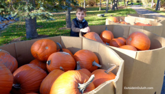 Helping Carve 1,000 Pumpkins:  A Spooktacular Experience