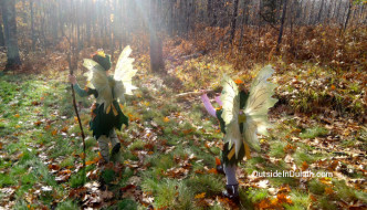 Foster Your Child's Imagination Outdoors on a Costume Hike