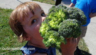 How to Get Kids to Eat More Vegetables in Duluth