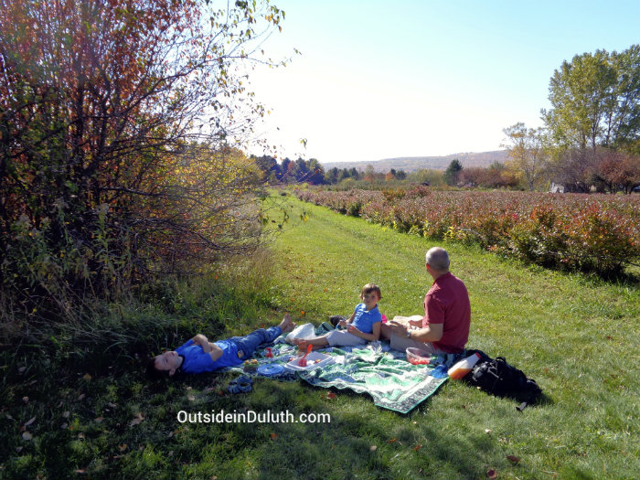 Picnic at Blue Vista Farm