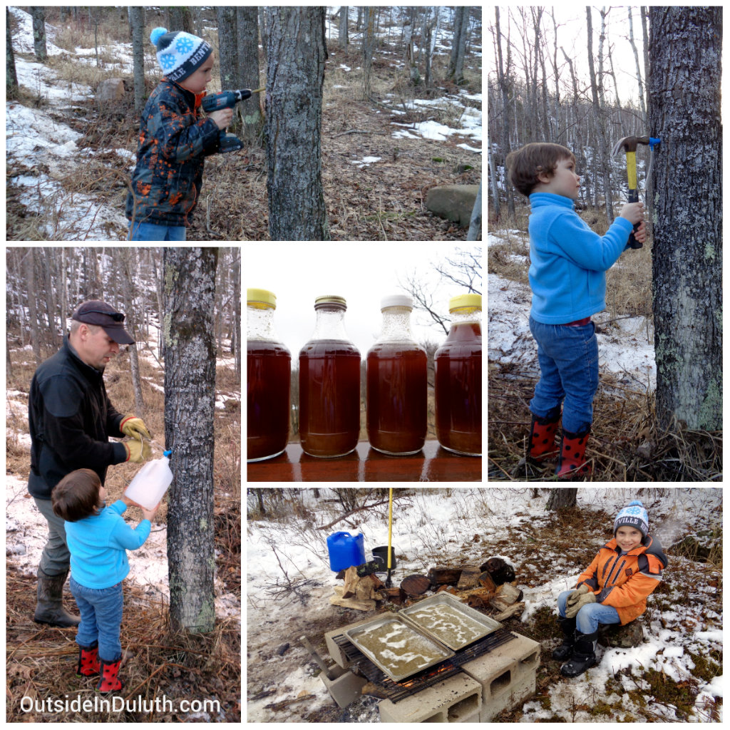 Making Maple Syrup, Duluth, MN