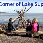 The Corner of the Lake: Beach Glass, Driftwood, and Water