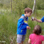 Guided Hike at Hartley Park:  A Great Way to Learn